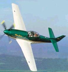 Thunder Mustang-1.jpg